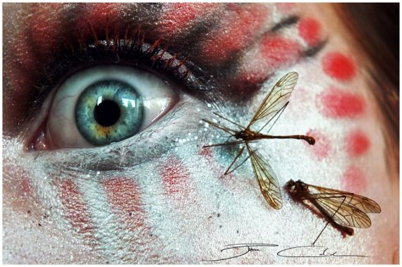 insectophobia_by_pixiecold-d5dbayq