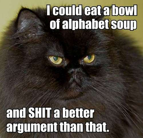 i-could-eat-a-bowl-of-alphabet-soup-cat-cats-kitten-kitty-pic-picture-funny-lolcat-cute-fun-lovely-photo-images[1]