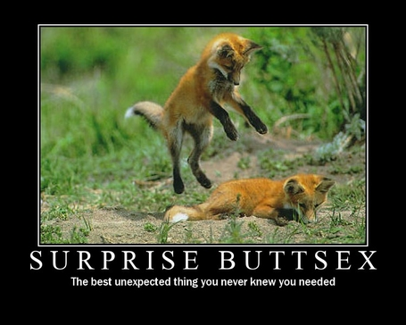 surprise-buttsex